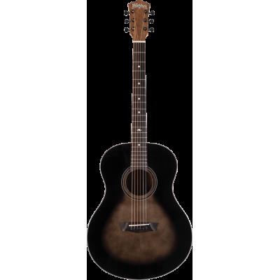 gitara akustyczna WASHBURN BTS 9 (CH)