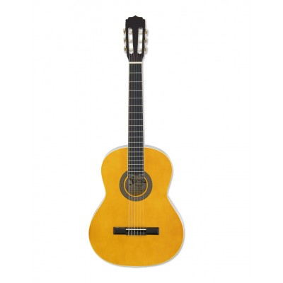 Gitara klasyczna Aria FST-200 (N)