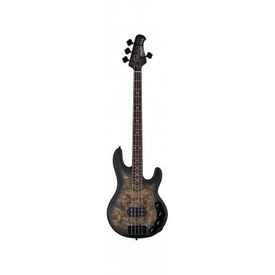 Gitara basowa Sterling RAY 34 (PB-TBKS-R2)