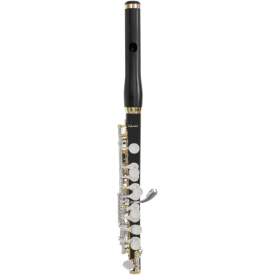 Flet piccolo Bulgheroni 601-R